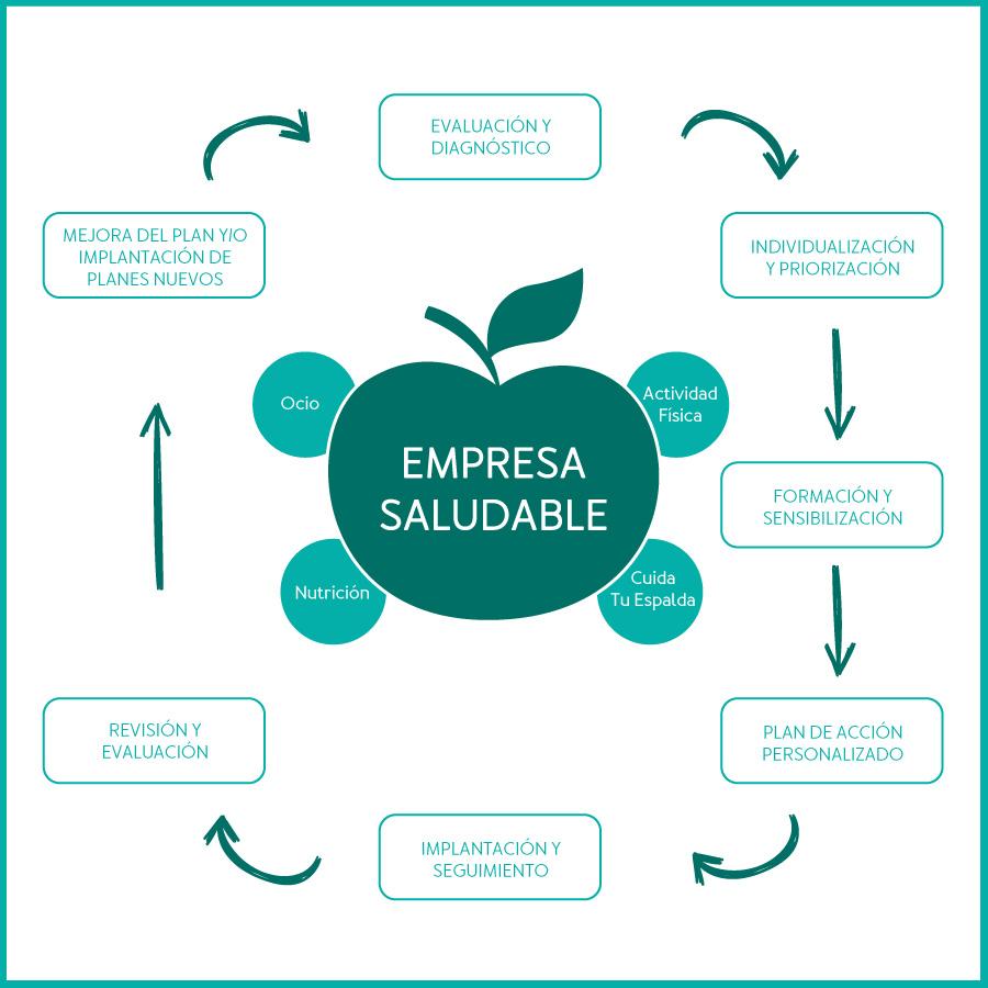 implementacion modelo empresa saludable
